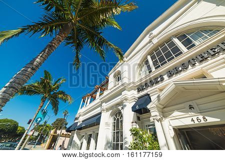 BEVERLY HILLS CALIFORNIA - NOVEMBER 02 2016: Palm trees in Rodeo Drive Beverly Hills