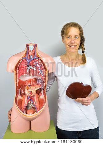 Dutch woman holding liver at body near human torso