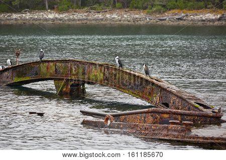 Old rusty shipwreck in Canoe Bay, Tasmania, Tasman Peninsula
