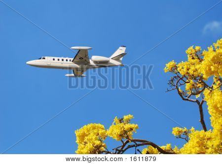 Jetset Weekend Getaway