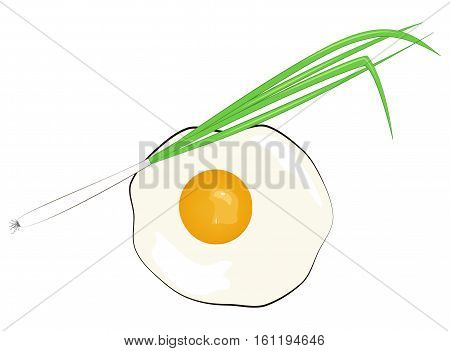 Fried eggs with green onions. Vector illustration