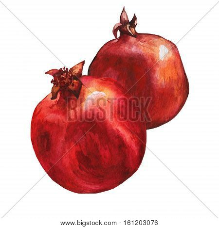 Illustration of ripe pomegranate fruit. Hand drawn watercolor painting on white background.