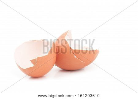 brown egg on white background. A close up