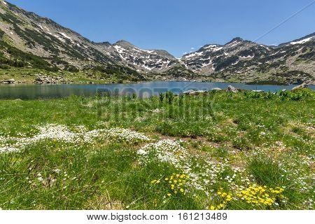 Amazing landscape of Demirkapiyski chukar, Popovo lake and yellow flowers in front, Pirin Mountain, Bulgaria