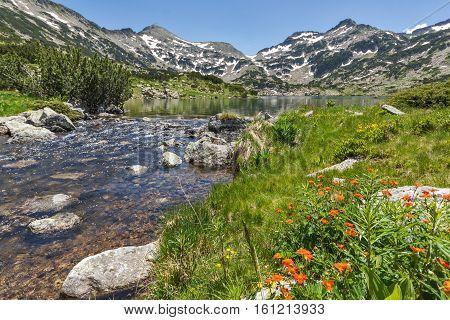 Mountain River, Demirkapiyski chukar and Dzhano peaks, Popovo lake, Pirin Mountain, Bulgaria