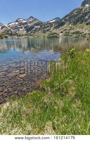 Green grass and Demirkapiyski chukar peak and Popovo lake, Pirin Mountain, Bulgaria