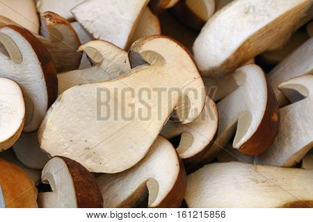 Fresh Ceps Porcini Mushrooms Halves Close Up