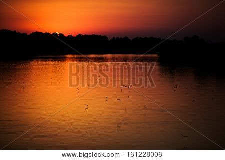 beautiful orange sunset over the river the river at sunset birds flying over the water the sun get behind the horizon