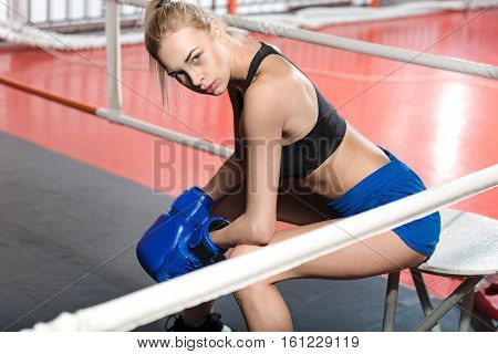 Boxing is exhausting. Well trained intent attractive female boxer sitting in the corner of the ring while resting after intensive training