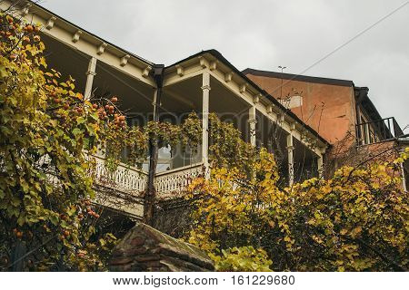 Typical house exterior of Tbilisi old town center in Autumn. Shabby house with wooden balcony, fruit trees and twining shrubs