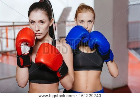 Strength and health. Fit beautiful young ladies standing together in a gym while wearing special boxing gloves and other sportswear