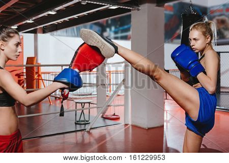 Reach the top. Two beautiful sexy fit women having a good time mastering their kicks in a gym while using special punching pads