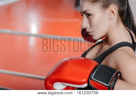 Strategic fighting. Serious attractive young lady getting mentally ready for a boxing competition while standing on ring and leaning on ropes
