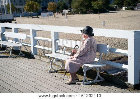 Elegant Senior Woman On Bench
