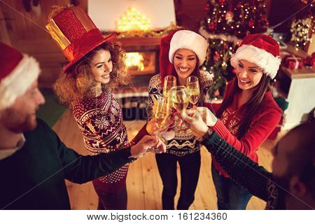 Friends toasting for happy Christmas holiday