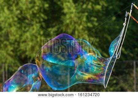 Large Bubbles Form From Soapy Bubble Wand