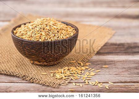 Yellow Thai paddy jasmine rice on wooden plank background