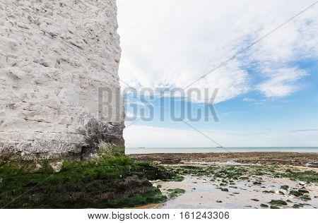White Cliffs Botany Bay La Manche English Channel
