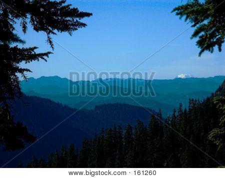 Many Peaks