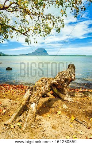 Seascape. Le Morne on a background. Mauritius