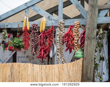 Bunches of red peppers, garlic and colourful onions hanging on the wooden roof. Picture of the yellow maize, grapes, colourful onions and red peppers hanging on a wooden roof behind the wooden fence.
