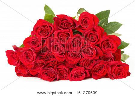 Bouquet Of Fresh Red Roses Isolated