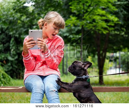 Dog pesters girl on a Park bench. Teen girl with tablet. Fear emotions