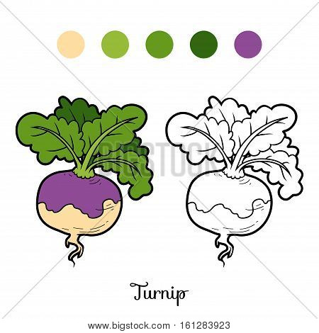 Coloring book for children, cartoon vegetables Turnip