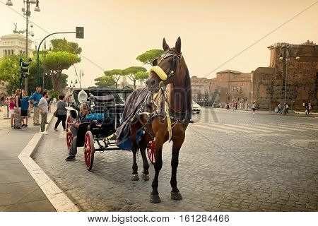 Rome, Italy - June 16, 2016. Horse on via dei Fori Imperiali in Rome with the view on Vittoriano