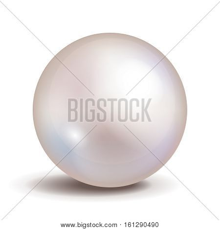Vector pearl isolated on white background. Shiny oyster pearl ball for luxury accessories. Sphere shiny sea pearl illustration