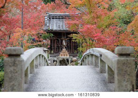 In Eikando Temple, Japan, during autumn season.