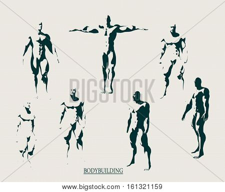 The collection of 7 Body building silhouette. Bodybuilder posing