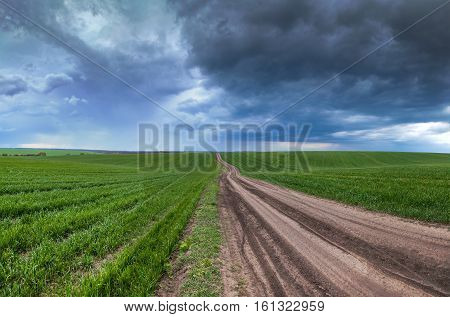 Dirt road running through the fields to the horizon