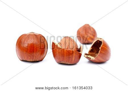 Group healty hazelnuts isolated on white background