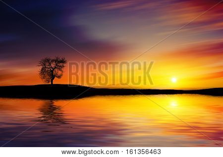 Sunset lake. summer landscape, tree at lake
