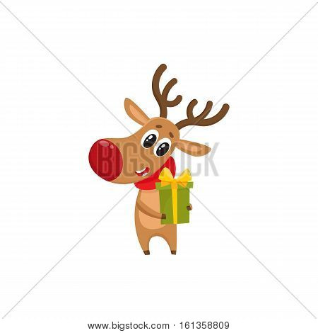 Funny Christmas reindeer in red scarf holding a gift, present, cartoon vector illustration isolated on white background. Red nosed deer in red scarf with Christmas present, holiday decoration element