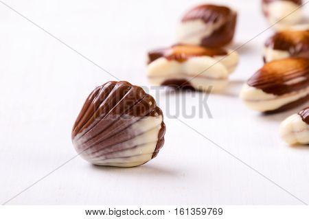 Chocolate Seashell On White Table