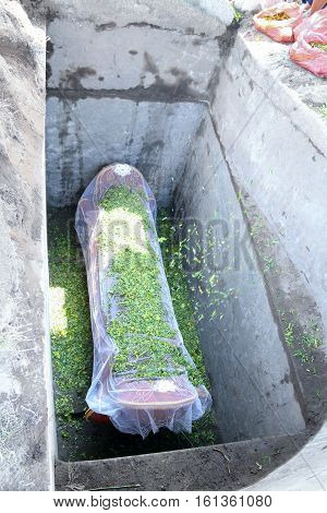 a coffin put into the ground to be buried in funeral ceremony