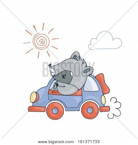 Illustration with a cheerful racoon in car. Vector image.