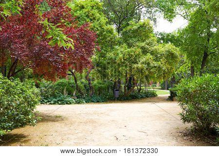 seville maria luisa park gardens in andalucia spain  exterior image shot from public park