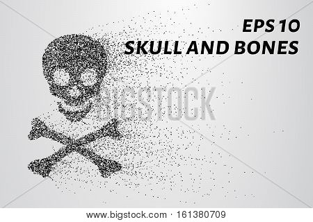 Skull And Bones Of The Particles. The Skull And Bones Consists Of Circles And Points. Vector Illustr