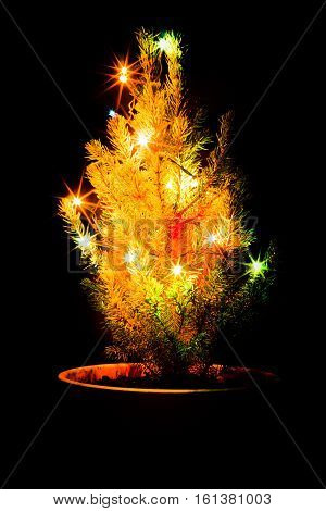 Small Christmas Tree With Garland In A Pot. Black Background.