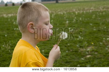 Boy Blowing Dandelion