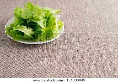 Shredded Lettuce Leaves On A White Saucer