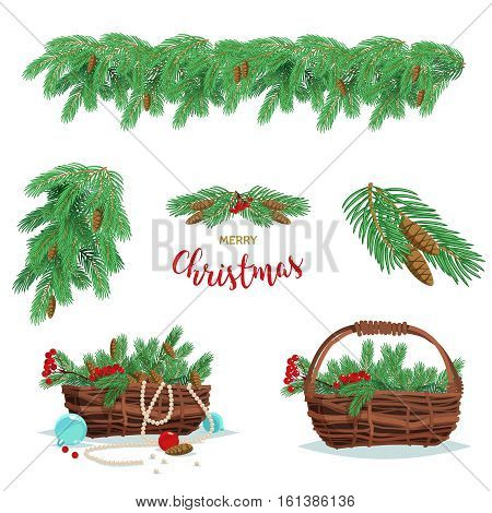 Set of basket of fir spruce branches berries and cones isolated on white background. Vector stock illustration.