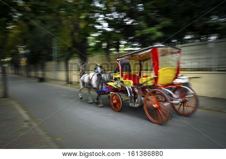 In the fall Buyukada Phaeton. Horse Carriage. The symbol of the Islands is the transportation vehicle phaetons. Adalar in Marmara Sea near Istanbul in Buyukada (meaning Big Island in Turkish). This is a neighborhood in the Istanbul Islands Turkey Islands.