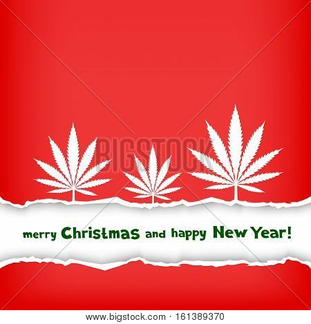 Christmas congratulation torn red paper and frame with the message of greetings on white background. Growing cannabis hemp marijuana white leaf