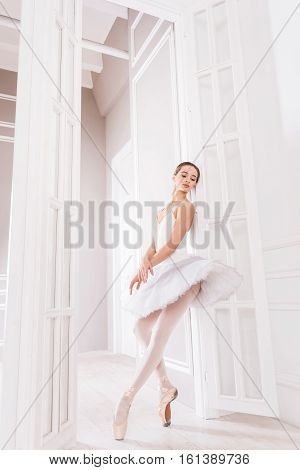 Ballet position. Delighted serious classical dancer wearing white leotard with tutu standing in points on tiptoes while posing at camera