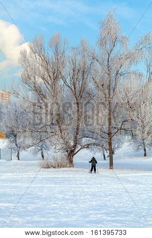 The Boy On The Cross Country Skiing