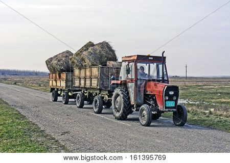 Zrenjanin Serbia November 16 2016. Tractor with two trailers transporting hay.